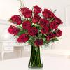 36 Rosas Rojas Importadas
