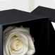 Adornado con cinta organza (0.3), Piedra de rio (0.5), Caja Rosa Eterna (1.0), Adornado con cinta organza (0.3), Rosa Eterna Roja (1.0), Piedra de rio (0.5), Caja Rosa Eterna (1.0), Rosa Eterna Roja (1.0)