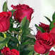 Tridente (1.0), Papel empavonado negro (2.0), CINTASATIN ROJO (3.0), Tridente (1.0), Rosa roja importada de tallo largo (18.0), Ruscus (10.0), Ruscus (10.0), Papel empavonado negro (2.0), CINTASATIN ROJO (3.0), Rosa roja importada de tallo largo (18.0)