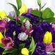Aurora Floral Deluxe
