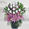 Primavera Con Estilo Tulipan Deluxe