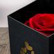 Adornado con cinta organza (0.3), Piedra de rio (0.5), Pescera chica de cristal (1.0), Adornado con cinta organza (0.3), Rosa Eterna Roja (1.0), Palitos de junco (2.0), Palitos de junco (2.0), Piedra de rio (0.5), Pescera chica de cristal (1.0), Rosa Eterna Roja (1.0)