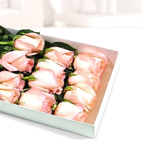 Caja Con 12 Rosas Pastel