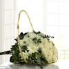 Violetero Con 18 Rosas Blancas