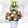 Arreglo De Tulipanes Bicolor Bienvenue
