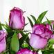 Espuma floral (1.0), Rosa morada importada de tallo largo (18.0), Decorado con papel arroz (1.0), Adornado con cinta satín (3.0), Espuma floral (1.0), Ruscus (10.0), Ruscus (10.0), Decorado con papel arroz (1.0), Adornado con cinta satín (3.0), Rosa morada importada de tallo largo (18.0)