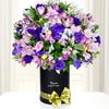 Aurora Floral En Primavera Deluxe