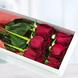 Caja Con 6 Rosas Rojas
